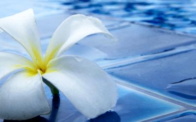 Fallece una bebé ahogada tras caer a una piscina en Montserrat